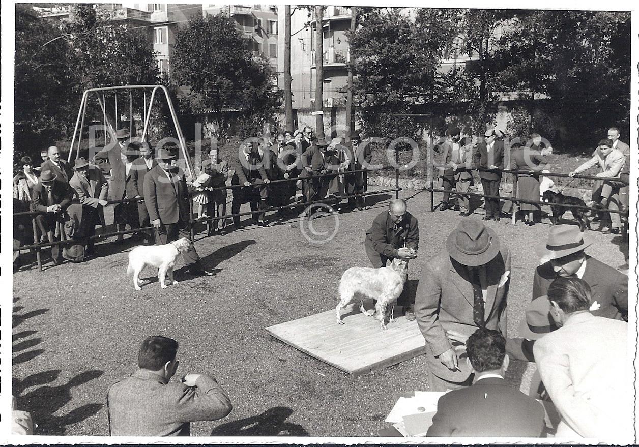 FOTOGRAFIE DI PEGLI NEL 1959